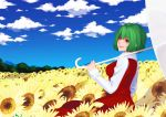 cloud colored_eyelashes field flower flower_field kazami_yuuka long_sleeves parasol red_eyes sky smile solo sunflower touhou tree umbrella vest youkai yuuten