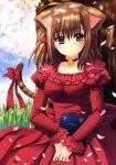 animal_ears bell blush book brown_eyes brown_hair cat_ears cherry_blossoms dress grass nishimata_aoi oretachi_ni_tsubasa_wa_nai petals ribbon short_hair solo tail tamaizumi_hiyoko tree