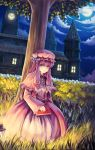 bryanth capelet clock clock_tower cloud full_moon grass hair_ribbon hat highres lantern light long_hair looking_at_viewer moon night night_sky patchouli_knowledge purple_eyes purple_hair ribbon scarlet_devil_mansion sitting sky solo star_(sky) starry_sky touhou tower tree under_tree violet_eyes window