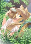 animal_ears aqua_eyes bare_shoulders basket blonde_hair collarbone dutch_angle looking_at_viewer midriff original plant ponytail solo tail takigawa_yuu tree