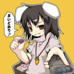 black_hair brown_eyes bunny_ears carrot chocolate grin inaba_tewi iosys jewelry money noya pendant rabbit_ears short_hair simple_background smile solo touhou translated translation_request yen