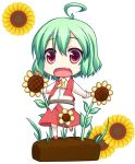 ahoge ascot belt chibi fang flower green_hair kazami_yuuka open_mouth outstretched_arms pilky plaid plaid_skirt plaid_vest red_eyes shirt short_hair skirt skirt_set solo sunflower touhou unmoving_pattern vest youkai