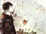 black_hair black_rose black_rose_(flower) brown_eyes cage english flower hibari_kyouya josco katekyo_hitman_reborn katekyo_hitman_reborn! male red_rose rose short_hair solo