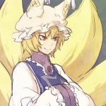 brown_eyes fox_tail hands_in_sleeves hat lowres multiple_tails smile solo tail tomobe_kinuko touhou yakumo_ran