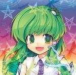 dragonfly ebizome frog green_eyes green_hair hair_ornament kochiya_sanae long_hair snake star syslila touhou