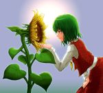 flower green_hair hand_on_thigh highres kazami_yuuka leaning_forward profile short_hair smile sunflower touhou youkai