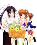 ;) artist_request basket bicycle brown_eyes brown_hair flower haruka_(sister_princess) highres hinako multiple_girls purple_eyes purple_hair riding shorts sister_princess sunflower violet_eyes wink yotsuba_(sister_princess)