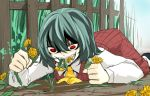 ascot crazy_eyes dandelion dirt eating fangs fence flower green_hair kazami_yuuka kazeharu long_sleeves lying on_stomach open_mouth plaid plaid_vest red_eyes shaded_face short_hair skirt skirt_set smile solo touhou vest youkai