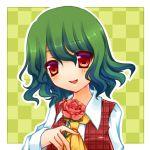 ascot checkered checkered_background dress_shirt flower green_hair kazami_yuuka kujou_mikuru plaid plaid_vest red_eyes shirt short_hair solo touhou youkai