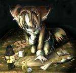 ambiguous_gender blue_eyes cat compass feline furry goggles lantern light map namaneko original solo