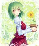 flower flower_pot green_hair kazami_yuuka plaid plaid_skirt plaid_vest red_eyes short_hair skirt smile solo sunflower touhou walzrj