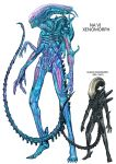 70s alien alien_(movie) avatar_(movie) crossover kusagami_style monster na'vi na'vi oldschool science_fiction simple_background white_background xenomorph