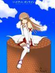 asuna_(sao) sao sword_art_online yuuki yuuki_asuna