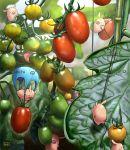 bamboo blurry carrying climbing depth_of_field falling food fruit leaf matataku minimized no_humans on_head original parachute pig plant realistic rope tomato
