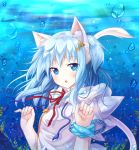 :o animal_ears bangs blue_eyes blue_hair bubble bubbles bust cat_ears cat_tail mitsuki original red_ribbon ribbon short_hair solo tail underwater
