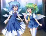 2girls blue_hair cirno daiyousei green_hair takeponi thigh-highs thighhighs touhou wings
