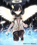 angel angel_wings bangs bare_shoulders barefoot black_hair black_legwear blush cleavage_cutout cloud cross cygames detached_collar detached_sleeves dress expressionless feathers flat_chest glowing glowing_wings gothic hair_feathers hair_ornament hair_over_one_eye halo jewelry lena_(zoal) light_particles looking_at_viewer magic nature necklace night night_sky no_bra outdoors puffy_sleeves river sakieru_(shingeki_no_bahamut) shingeki_no_bahamut short_dress short_hair sky solo squatting standing_on_water swept_bangs thigh-highs thigh_strap thighhighs title_drop toeless_legwear toeless_socks toes tree turtleneck water watermark white_wings wings yellow_eyes zettai_ryouiki