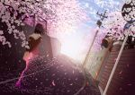 1girl arms_behind_back black_hair cherry_blossoms dissolving dutch_angle from_behind goke_shike_(altamira05) original petals road road_sign scenery school_uniform serafuku short_hair sign solo street telephone_pole traffic_mirror