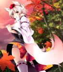 animal_ears autumn black_panties blush detached_sleeves fang from_behind from_below hat inubashiri_momiji leaf legwear looking_back maple_leaf nature open_mouth panties red_eyes shinoji_(shin_status) short_hair silver_hair solo tail thighhighs tokin_hat touhou tree underwear white_hair white_legwear wolf_ears wolf_tail