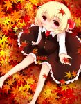 autumn barefoot blonde_hair blush koji_(kohei66) leaf maple_leaf red_eyes rumia short_hair sitting smile solo touhou
