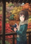 autumn blush brown_hair camera eichisu green_eyes highres leaf original scarf scenery short_hair skirt smile solo standing tree