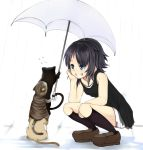 1girl bare_shoulders black_hair black_legwear cat cat_tower chin_rest female flying_sweatdrops ginji74 grin kneehighs original prehensile_tail rain short_hair smile solo squatting tail tail_hold trembling umbrella wet