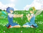 ankle_socks blue_dress blue_hair blue_sky bow cirno closed_eyes cloud clouds clover daiyousei dress fairy_wings flower grass hair_bow hair_flower hair_ornament mary_janes meadow multiple_girls offering parted_lips puffy_sleeves rinriki shoes short_hair short_sleeves side_ponytail sitting sky smile thigh-highs thighhighs touhou wariza wings wreath