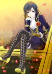 arm_support ascot blue_eyes blue_hair boots boutonniere chin_rest cross-laced_footwear crossed_legs flower gloves high_collar kaito kikuchi_mataha lace-up_boots legs_crossed looking_at_viewer petals project_diva project_diva_f rose scar short_hair sitting smile solo vocaloid