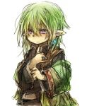 1boy final_fantasy final_fantasy_xi fujiwara_akina green_hair pointy_ears purple_eyes short_hair simple_background solo tarutaru violet_eyes