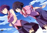 2girls absurdres aragaki_kazunari bakemonogatari black_hair black_legwear blue_eyes blush clouds crossed_arms dutch_angle hanekawa_tsubasa highres looking_at_viewer monogatari_(series) multiple_girls necktie newtype nisemonogatari official_art purple_hair school_uniform senjougahara_hitagi short_hair sky smile thigh-highs violet_eyes zettai_ryouiki