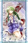 1girl detached_sleeves frog gohei green_eyes green_hair hair_ornament hanako5200 kochiya_sanae ofuda skirt snake solo touhou